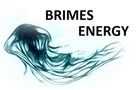 Jellyfish Brimes Energy