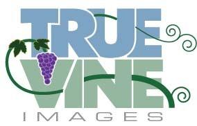True Vine Images