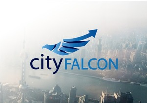 CityFALCON