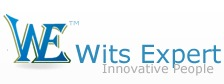 Wits Expert