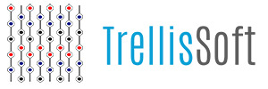 TrellisSoft Inc
