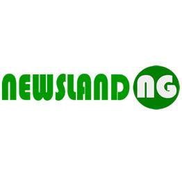 Newsland.ng Media