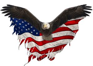 Eagle HotShot
