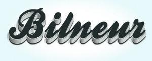 Bilneur Inc